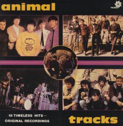 the_animals_animaltracks-374524